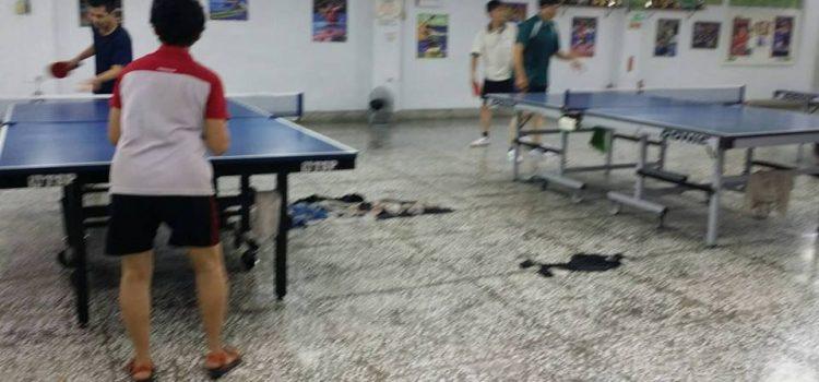 港興桌球推廣中心